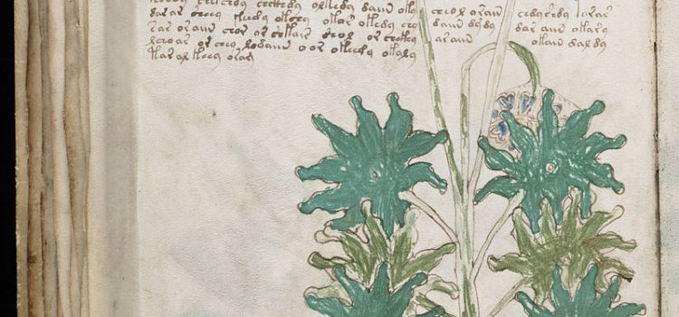 The Voynich Manuscript- A book that nobody can read